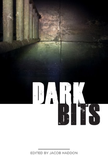Dark Bits (QuickLII Book 1) by [Ford, Robert, Lucia, Kevin, Degeit, Mandy, Shipp, Jeremy, Meikle, William, Braun, G.N., Booth III, Max, Chantal Noordeloos]